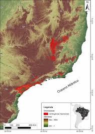 centroglossa-macroceras-mapa