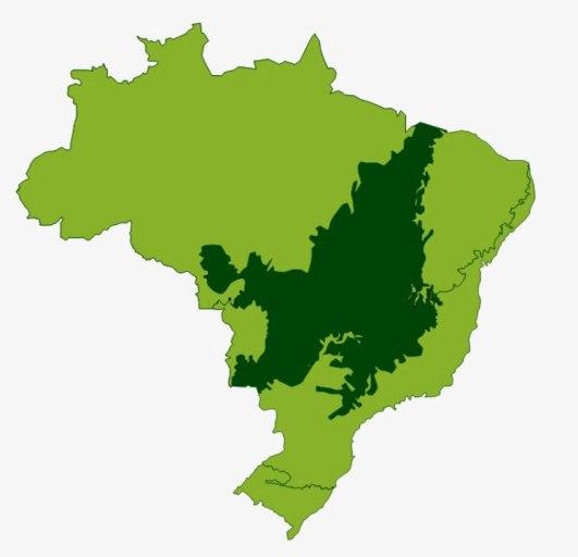 Resultado de imagem para Bioma Cerrado mapa