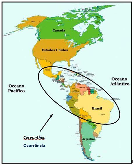Coryanthes leucocorys-ocorrencia GENERO JPG