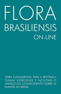 Mormolyca ringens flora brasiliensis