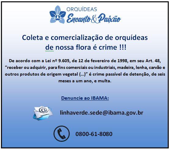ANUNCIO COLETA CRIME JPG