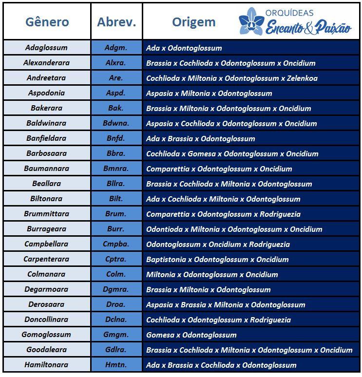 Odontoglossum krameri - hibridos lista PARTE 1