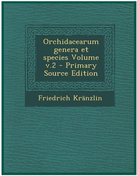 Bulbophyllum nymphopolitanum - livro Kraenzlin JPG