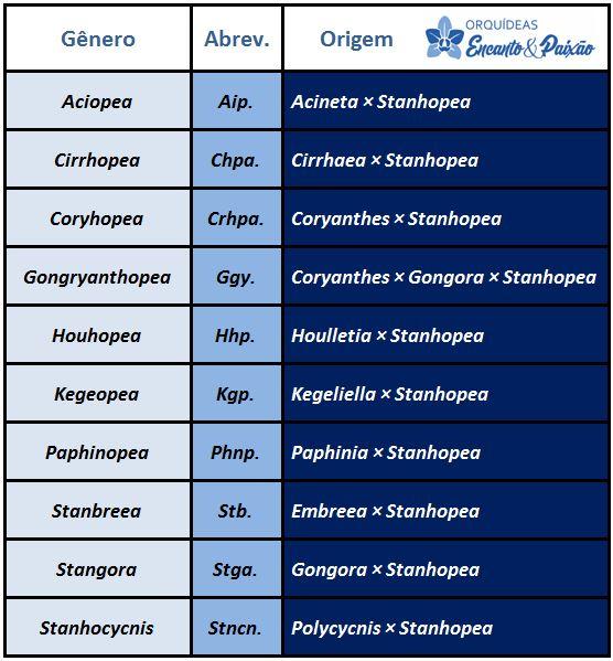 Stanhopea tigrina - hibridos JPG